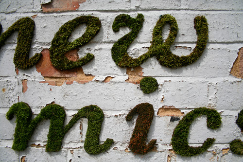 moss_graffiti-2.jpg