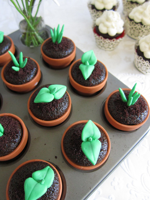 cupcake_sprouts-1.jpg